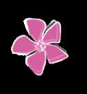 Fleur - Pépinières Pujante